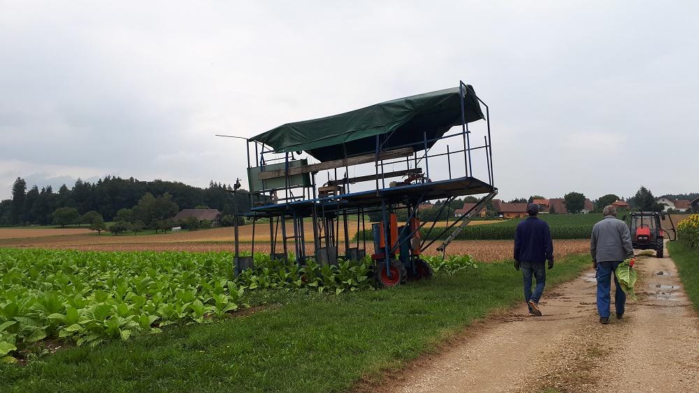Sosial Ekonomi Pertanian Mahasiswa Fakultas Pertanian Magang Kerja